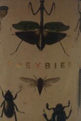 Hoeybier